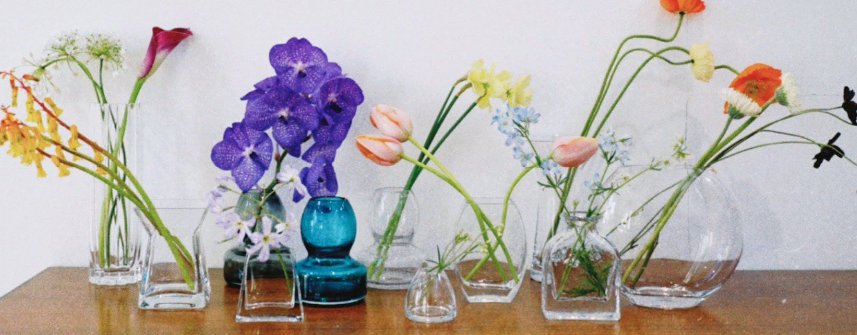 flowerbase visual